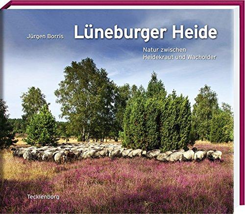 Lüneburger Heide: Natur zwischen Heidekraut und Wacholder